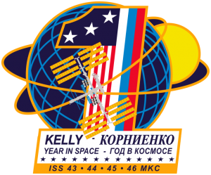 ISS Year long mission patch